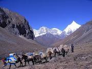 Himalaya Treks