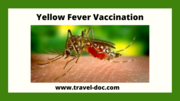 Get Yellow fever vaccine in Sheffield